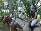 b_0_100_16777215_00_images_photos_loisirs_fil-ado_cheval_1.jpg